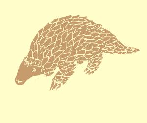 Pangolin (Animal)