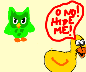 Duck didn't train his spanish ft Duolingo bir