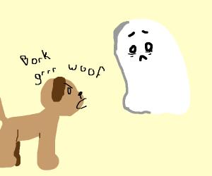 dog barking at ghost