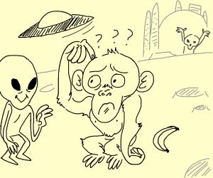 Confused monkey on alien planet