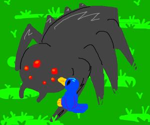 bird on spider's leg