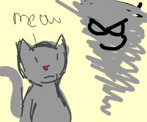 Cat and a tornado