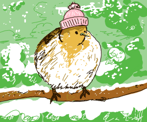 Bird thats Cold (Or Freezing...whatever)