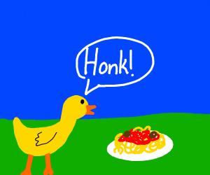 Duck honks at spaghetti