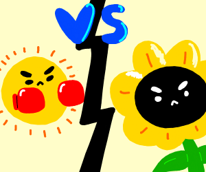 Sun vs. Sunflower