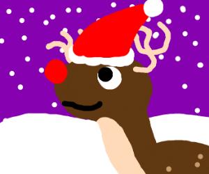 Raindeer with santa hat