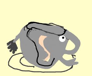 Teacup Elephant.