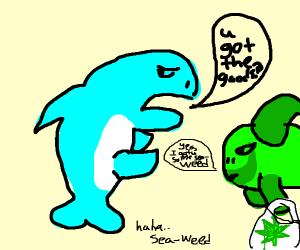 sharks dealing drugs