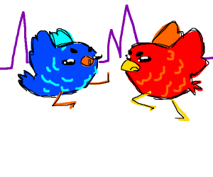 blue and red birb fighting