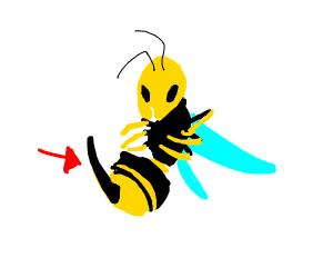 hornet stinger