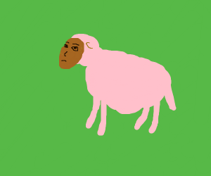 sheep with a potato head and a human face