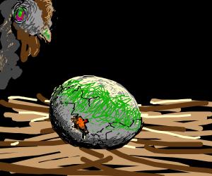Zombie Egg
