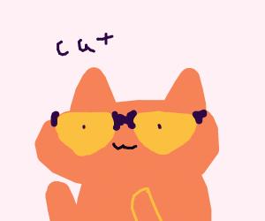 Orange cat with cool sunglasses