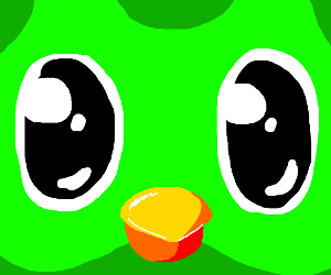 Duolingo owl is watching you