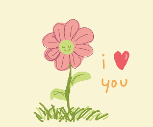 the pink flower loves you