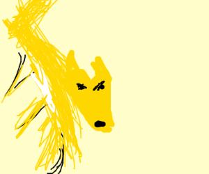A golden fox
