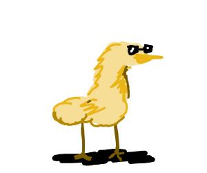 A cool Duck