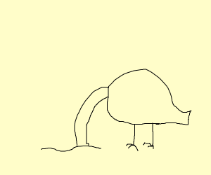 An ostrich sticking his head into the sand