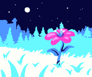 pink flower grows in a blue landscape
