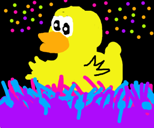 DUCK RAVE