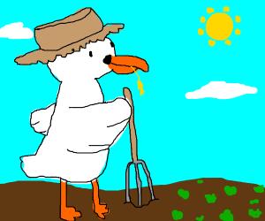 Field Worker duck