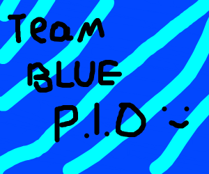 Team blue P.I.O