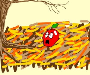 apple looks shocked at a tree