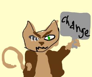homeless cat wants change
