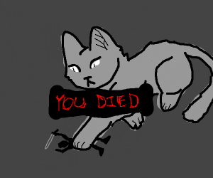 cat killed you