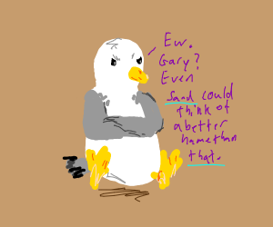 Seagull doesn't like its new name