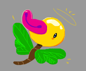 Angel Sprout