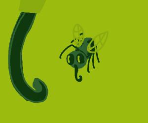 House full of flies