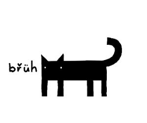 bruh cat