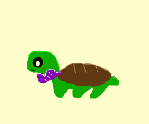 a turtle with a bow