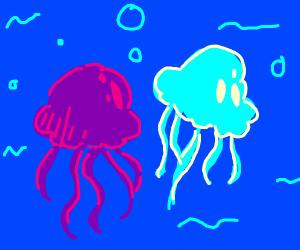 purple & blue jellyfish