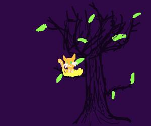 Cat in a nest