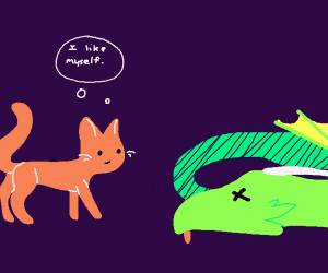 A cat killed a dragon by liking its self