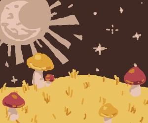 Serene field of mushrooms under night sky