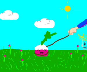 turnip on a leash, enjoying life