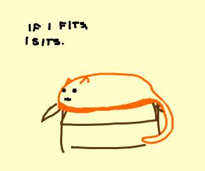 If I fits,I sits