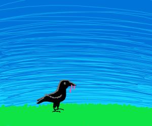 Bird finds a worm