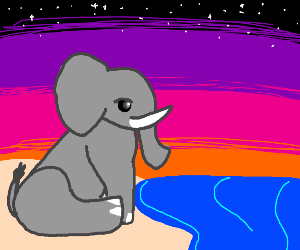 Elephant is viewing ocean sunset