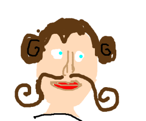 Picture of princess leia with a mustache