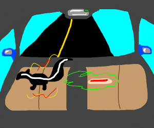 Super skunk spits on hot dog while in car