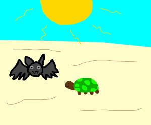 bat and tortoise on desert