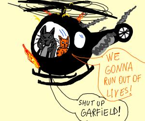 cat is a pilot
