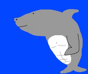 Angry buff shark