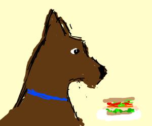 A doggo eating a sandwich