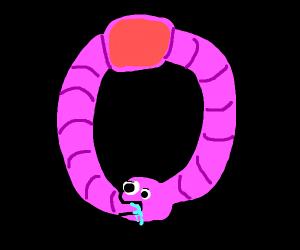 worm eats itself