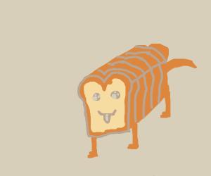 Beautiful pure bread dog
